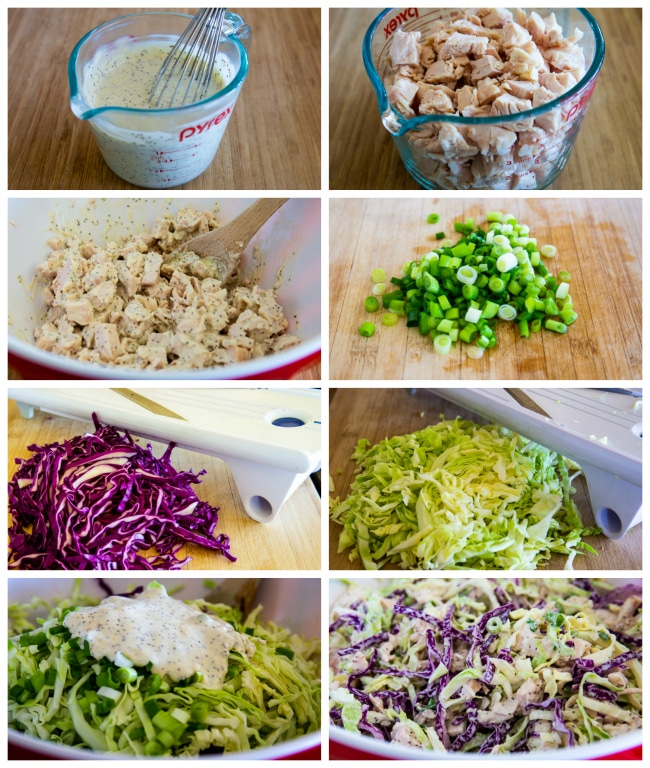 collage photo of salad with chicken, cabbage, mustard, and celery seeds